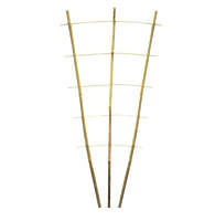 Шпалера бамбуковая веерная