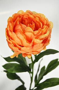 Пион одиночный оранжевый 75см