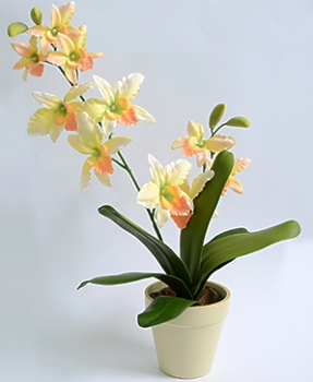 Орхидея цимбидиум в кашпо желтая